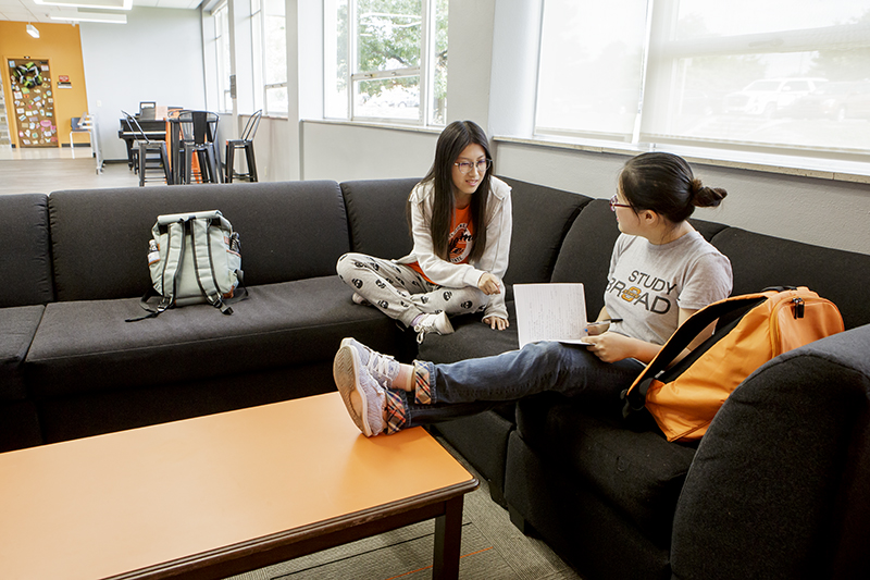 Two students studying in their dorm