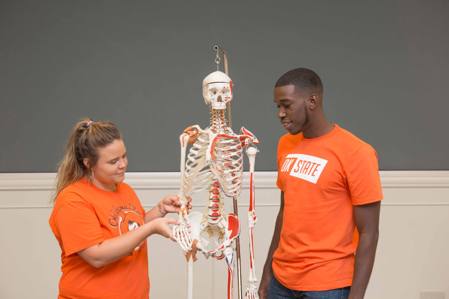 OSU students examine a skeleton model