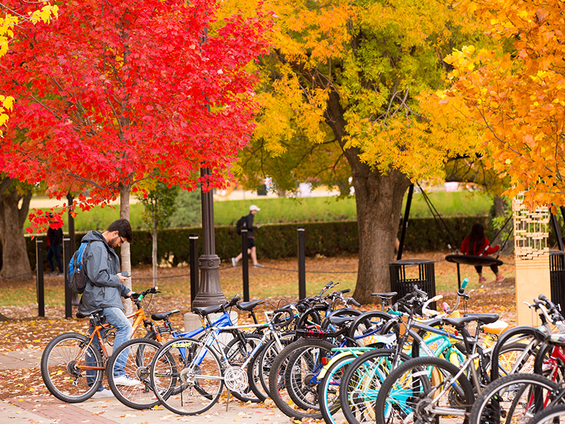 fall on campus, bikes